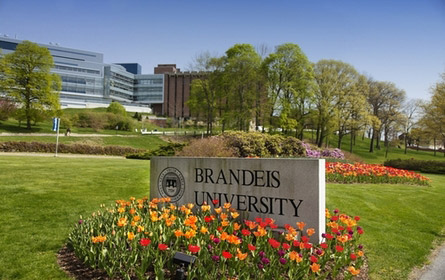Foto de la universidad de Brandeis de Boston